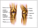 Orthopedic Surgeon delhi